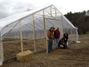 our construction gang poses after putting plastic over our new greenhouse frame